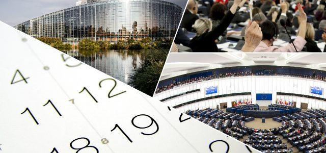 Plan zajęć Jana Olbrychta (13-17 listopada 2017)