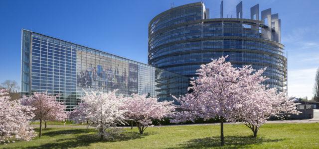 Sesja plenarna Parlamentu Europejskiego w Strasburgu
